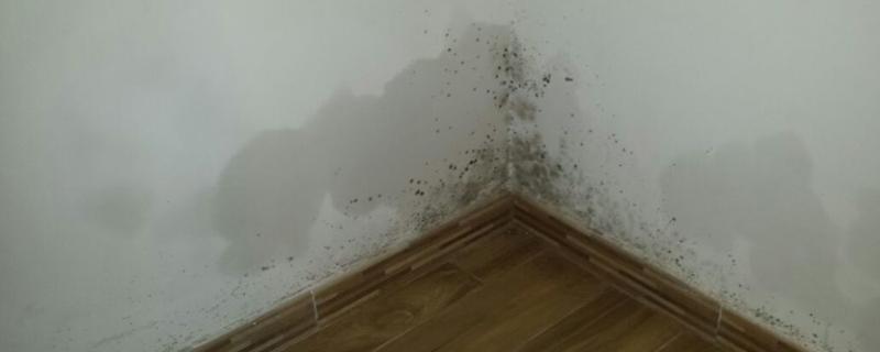 Condensa sui muri nelle costruzioni cause del problema e possibili soluzioni ballone - Eliminare condensa in casa ...